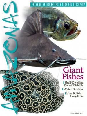 AMAZONAS Giant Fishes