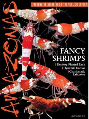 AMAZONAS Fancy Shrimps