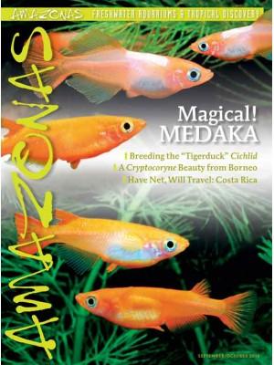 AMAZONAS MAGICAL! MEDAKA