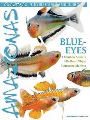 AMAZONAS BLUE-EYES