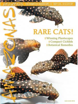 AMAZONAS Rare Cats!