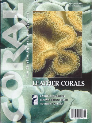 Leather Corals