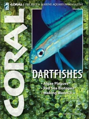 Dartfishes