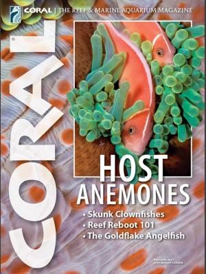Host Anemones