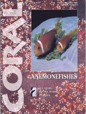 Anemonefishes