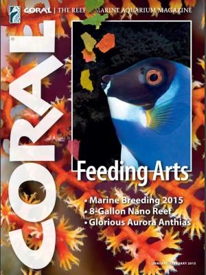 Feeding Arts