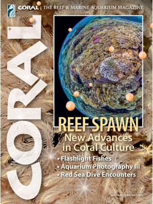 Reef Spawn