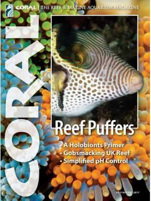 Reef Puffers