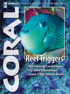 Reef Triggers