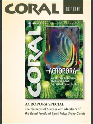 Acropora Special