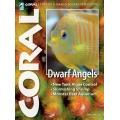 CORAL Dwarf Angels