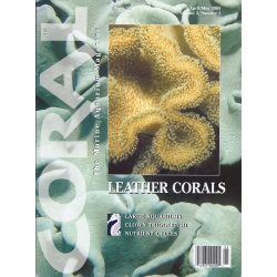 CORAL Leather Corals