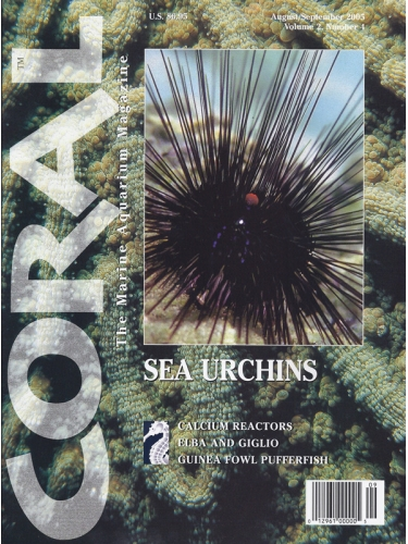 CORAL Sea Urchins