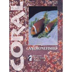 CORAL Anemonefishes