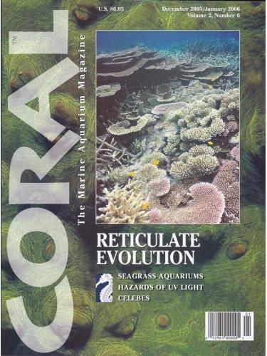 CORAL Reticulate Evolution