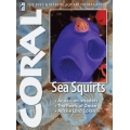 CORAL Sea Squirts