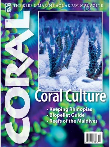 CORAL Coral Culture