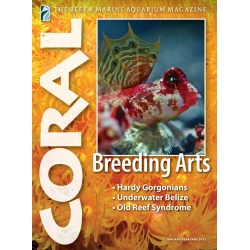 CORAL Breeding Arts