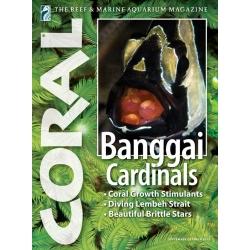 CORAL Bangaii Cardinals