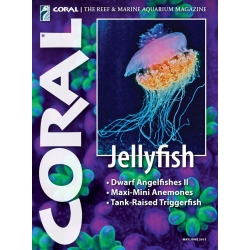 CORAL Jellyfish