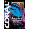 CORAL Hippo Tangs