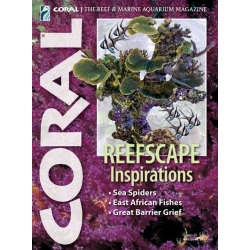 CORAL Reefscape Inspirations