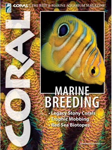 CORAL MARINE BREEDING