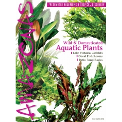 AMAZONAS Aquatic Plants