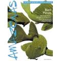 AMAZONAS Rare Plecos