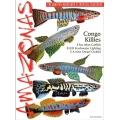 AMAZONAS Congo Killies