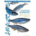 AMAZONAS DAZZLING DANIOS!