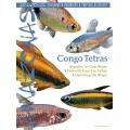AMAZONAS Congo Tetras