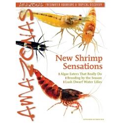 AMAZONAS New Shrimp Sensations