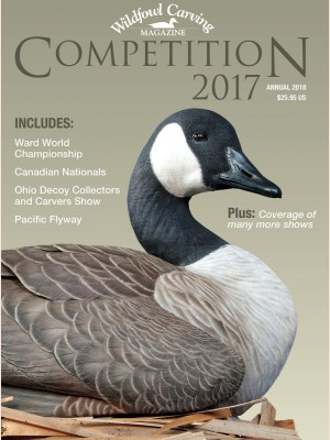 Competition 2017