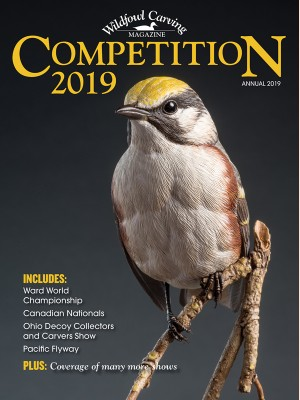 Competition 2019
