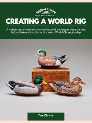 Creating a World Rig