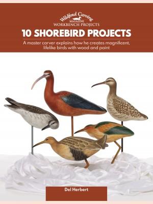 10 Shorebird Projects